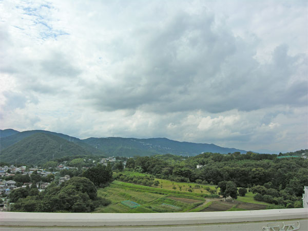 海は見えませんが、伊豆の山々を望みます。