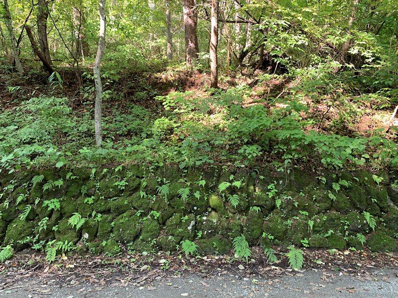 苔むした石垣が軽井沢の歴史を物語ります。