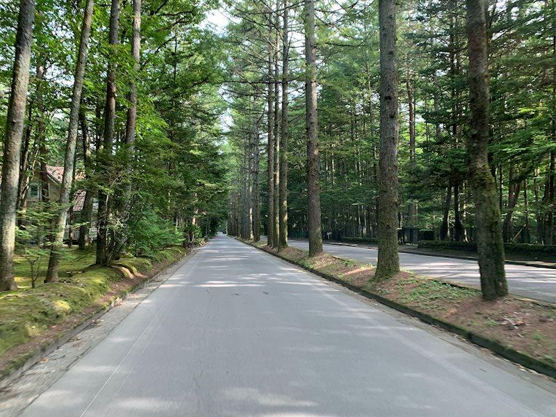 旧軽井沢のシンボル、三笠通りにも近く、お散歩も楽しめます。