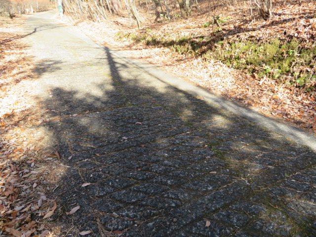 前面道路はアスファルト舗装された、アクセス良好な経路