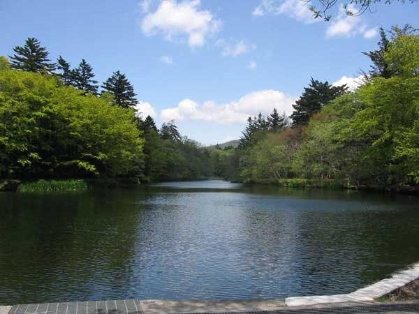雲場池で四季折々の情景を楽しむことができます。