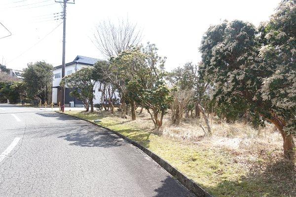 前面道路は幅員約8m対面通行の舗装道路です。