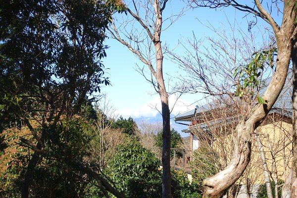 敷地から西方向に富士山を望むことができます。
