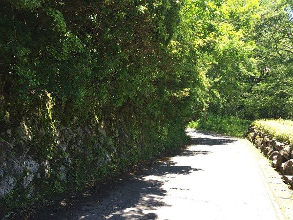 こちらの道路は東に緩やかな傾斜があります。