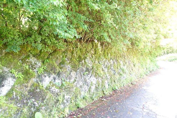 間知石積みの擁壁があります。