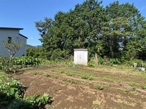 畑として利用している平坦な敷地です。