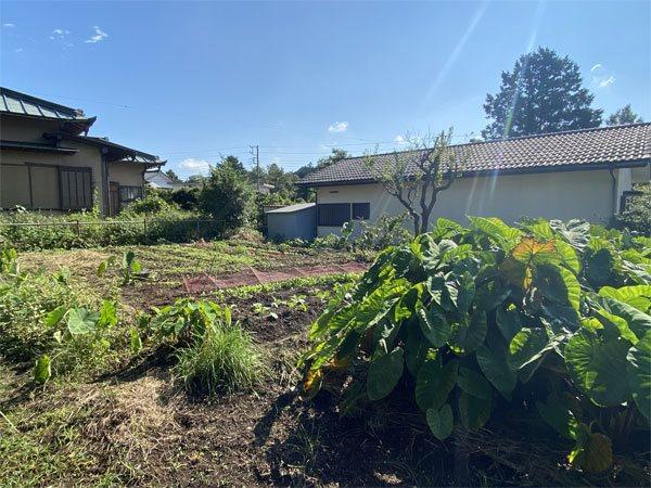 現在は畑として利用している敷地です。
