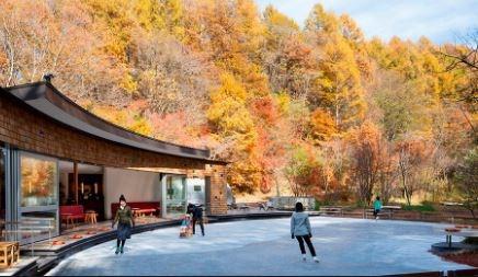 せっかく軽井沢にいるのであれば星野エリアのピッキオで自然の勉強をしてみては?
