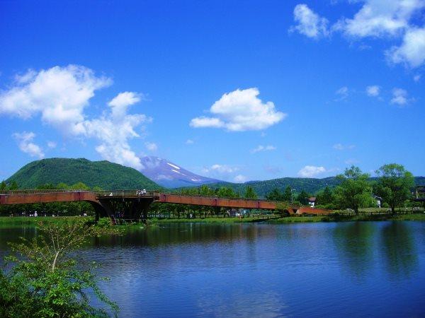 大賀ホールがある矢ケ崎公園まで車で約6分。