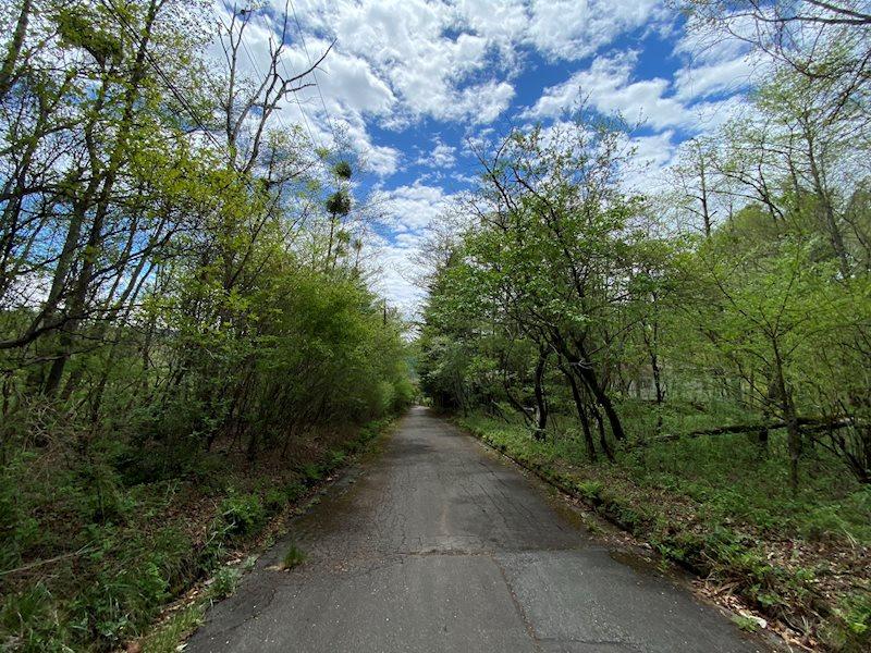 前面道路は安心の舗装道路。