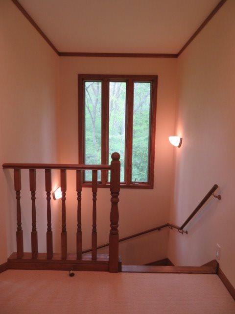 二階の踊り場開口部からも緑がカーテン代わり