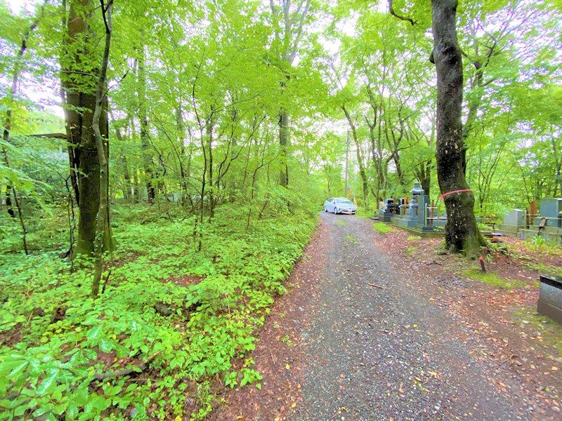 未舗装の道路で別荘地らしさもあります。