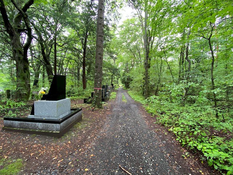 南側にあるお墓の様子です。