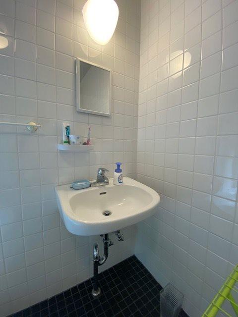 バスルーム内の洗面スペース。