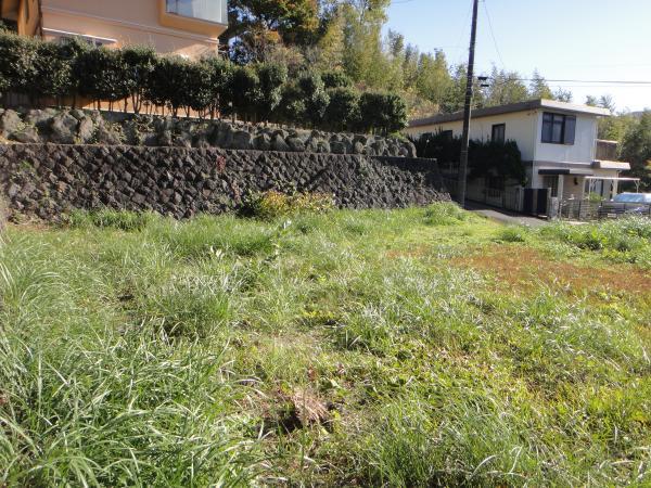 敷地内は基本的に平坦です。建物を建てやすい土地になります。
