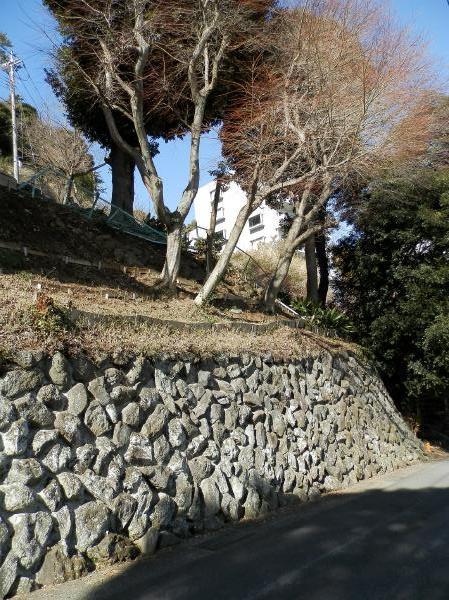 東側の擁壁。剪定も済んでおりますので、魅せるお庭づくりなどされてはいかがでしょうか?