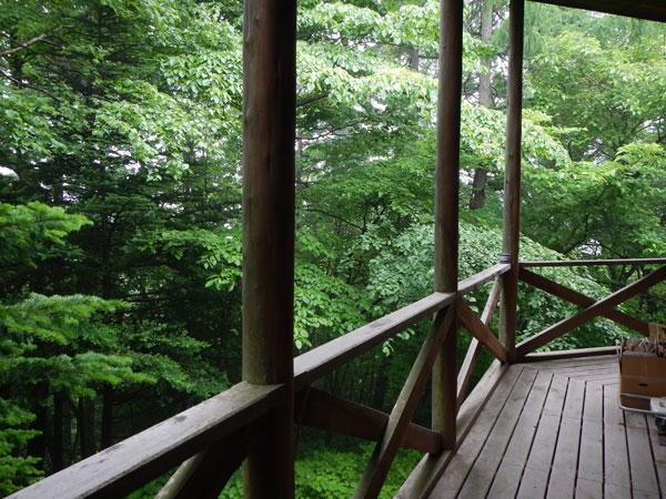 ウッドデッキからの景色。閑静な別荘地で静かに過ごせます。