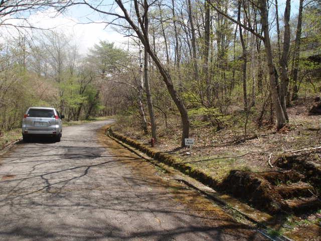 前面道路はしっかり舗装されており自動車には優しい道になってます。