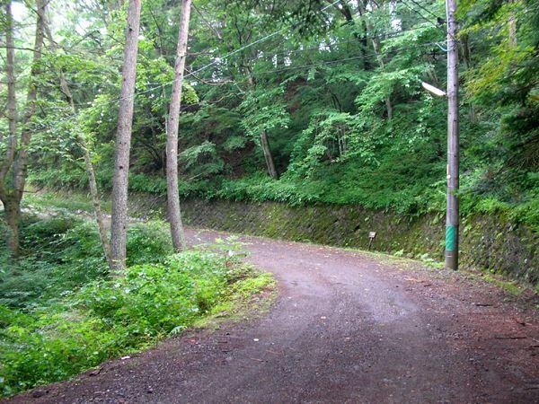 敷地の北側です。森に隠れるようにお隣が。