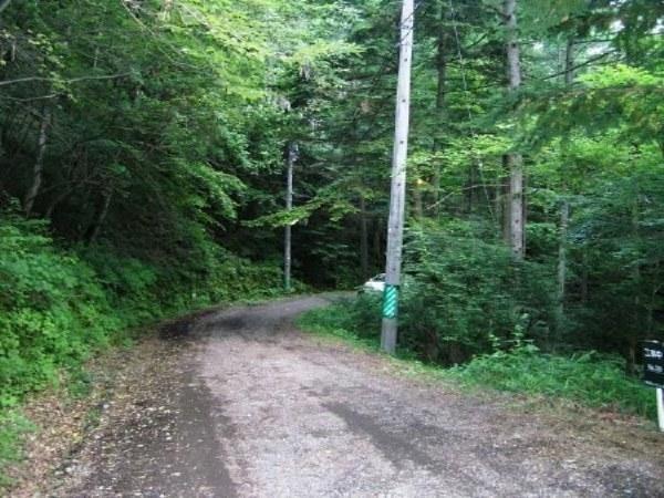 幅員4.8mの前面道路。軽井沢らしい未舗装道路です。