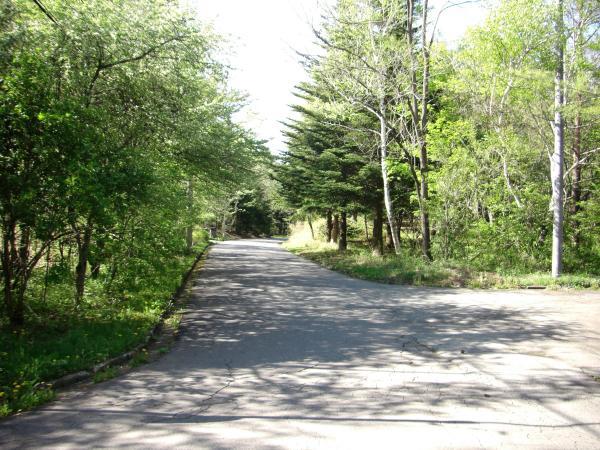 前面道路は広く舗装されております。