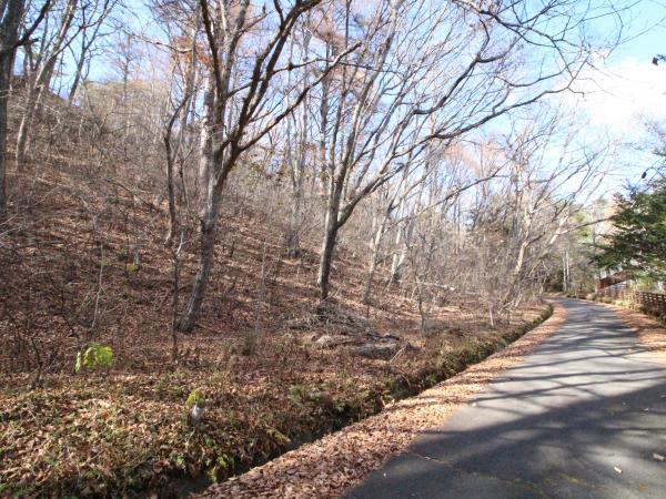 木々が生い茂る傾斜地での別荘ライフを。