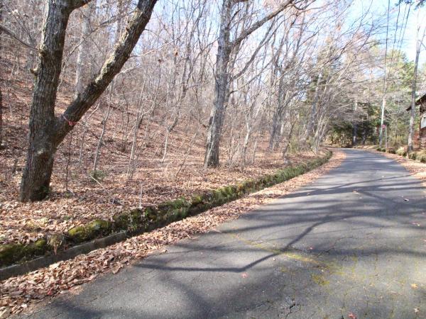 前面道路は幅員約6mで舗装済みです。