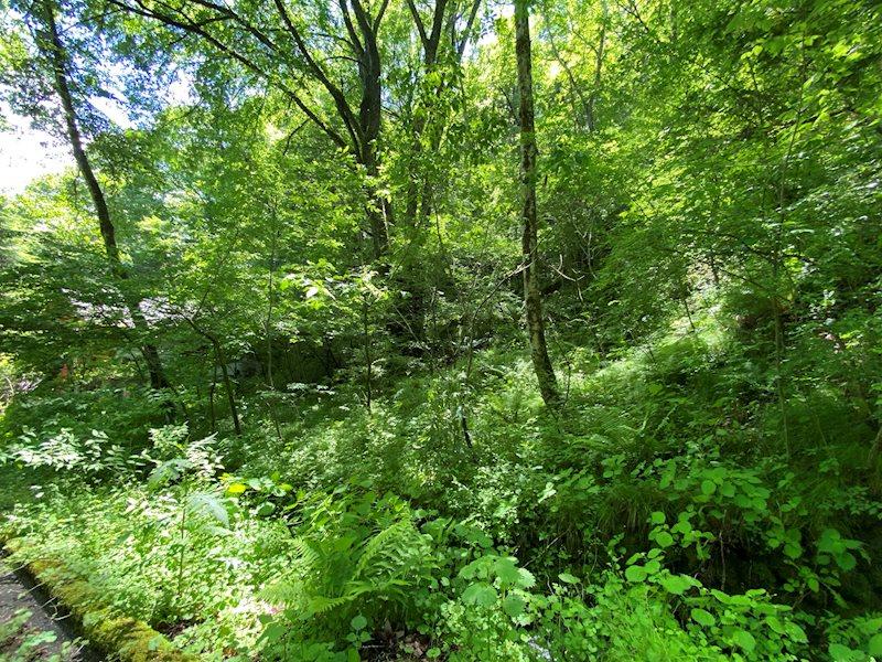 小川が流がれる千ヶ滝山の手区の土地!