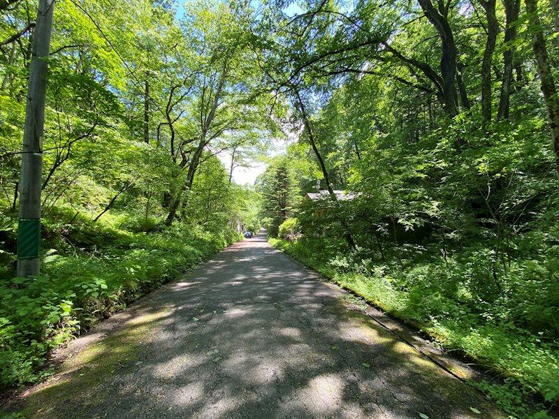土地の東側には水路がございます。