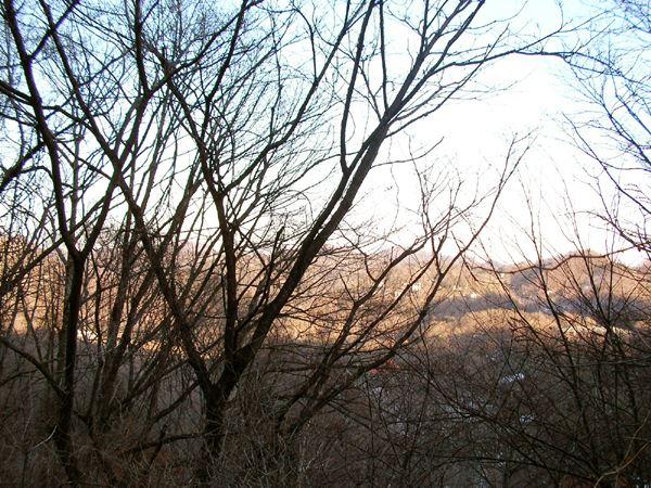 別荘地内からの眺望。
