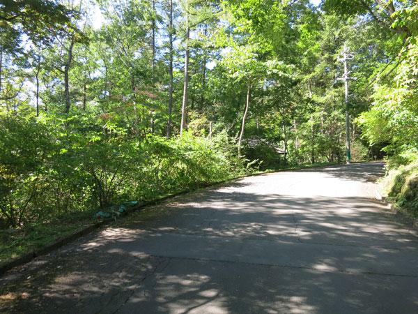 別荘地メイン道路に面した土地です。