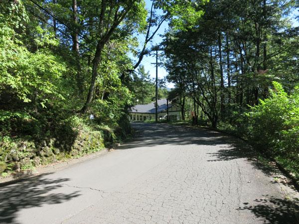 前面道路の様子です。舗装されたメイン道路になります。