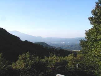 回りすべてを木々に囲まれた軽井沢の緑陰の醍醐味を。