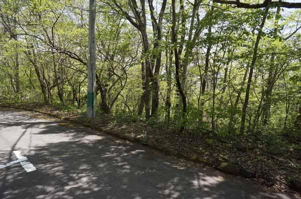 北側の道路から敷地は大きな段差はないです。