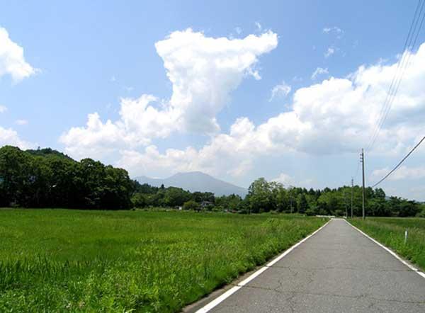 のどかな休耕田を通って別荘地に行きます。