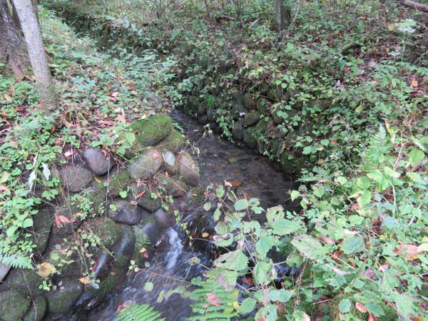 小川沿いにある立地なので、せせらぎの音を聞きながら軽井沢ライフを楽しめます!