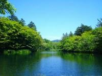 雲場池まで約2.7km(車で約6分)