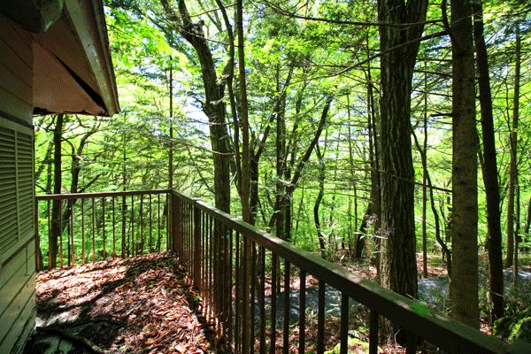東向きにベランダをつくると木々の間から遠くの山々を望むことができます。