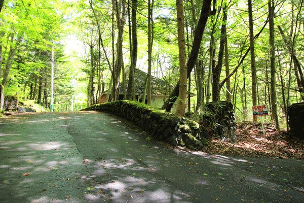 苔石が旧軽井沢らしい雰囲気を演出しています。