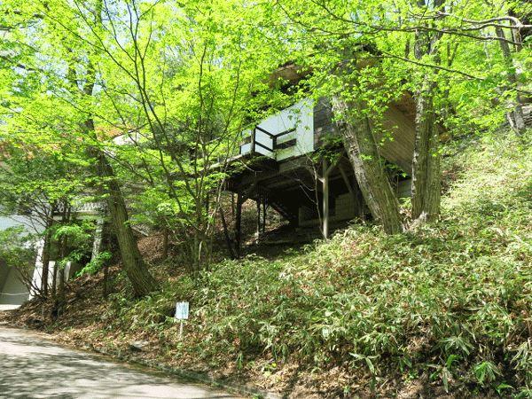緑に囲まれた別荘をお求めの方必見です!