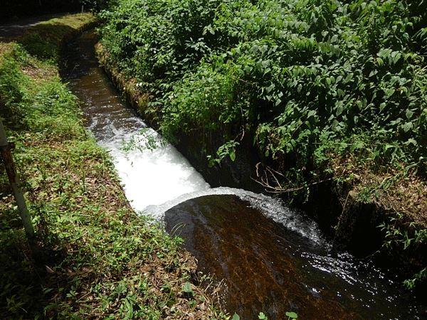 西側道路沿いには用水が流れています。軽井沢の自然を満喫できますね。