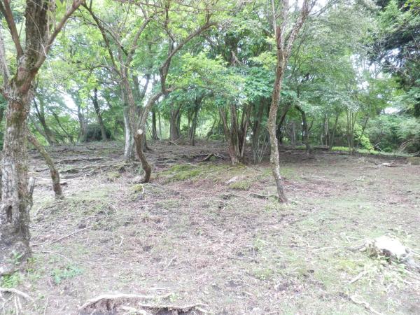 自然と共有できる敷地約4000坪
