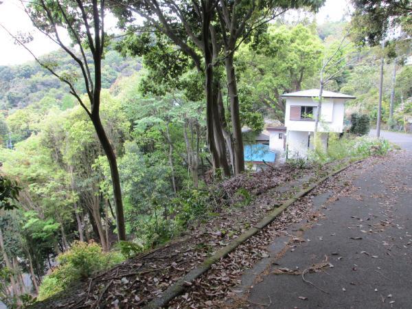 北側道路からの山側の眺め 傾斜はありますが、景色は買うことができます。