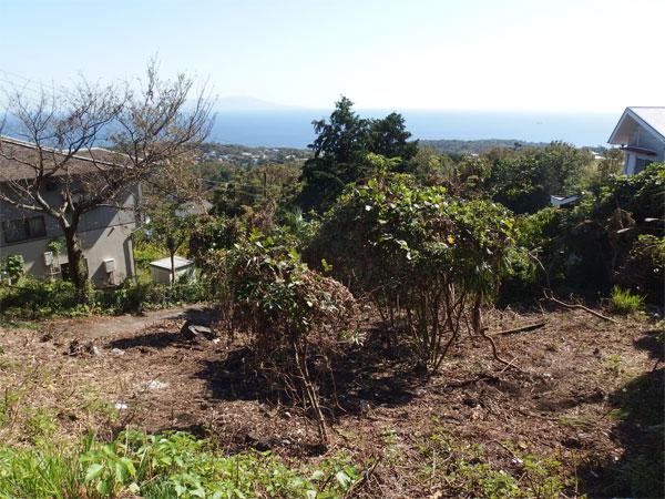 【眺望】伊豆諸島(利島・新島)を望みます。