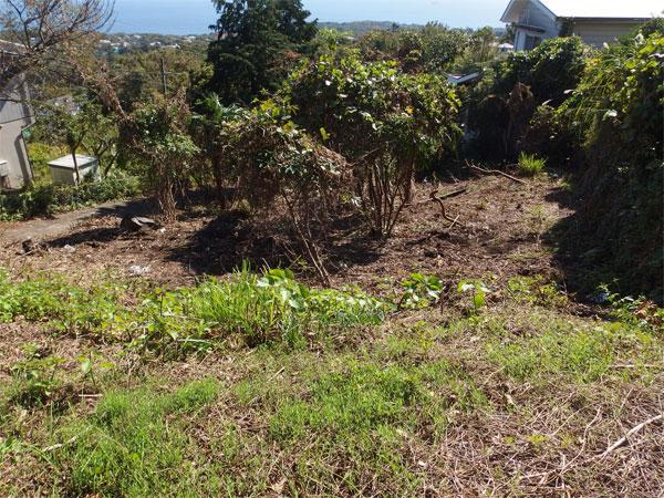 【日当り】南向きのため日当たりも良く、家庭菜園なども楽しめます。
