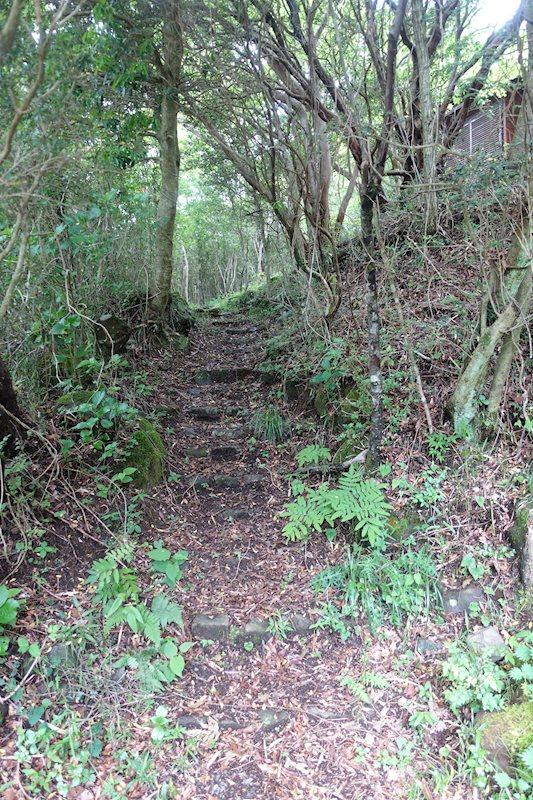 建築スペースまでは、こちらの緩やかな坂道を登ります。階段等整備されてみてはいかがでしょうか。