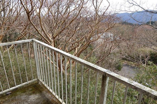 こちらはバルコニーからの眺望です。敷地内の整備をすることで眺望も期待できます。