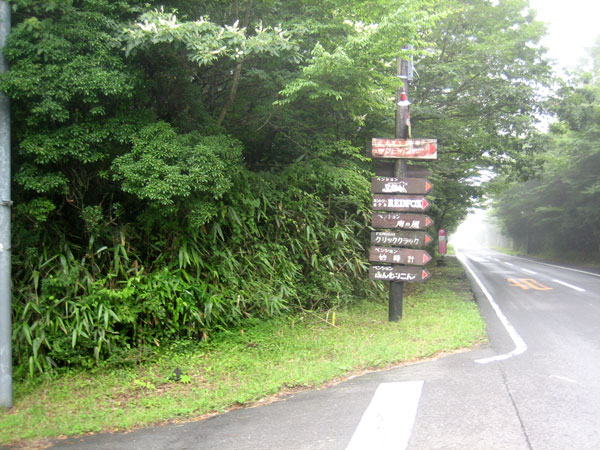 南側はメイン道路に接道しています。