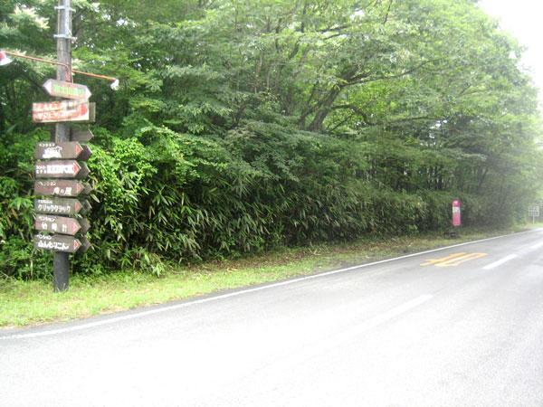 南道路面、間口の広い平坦な敷地です。