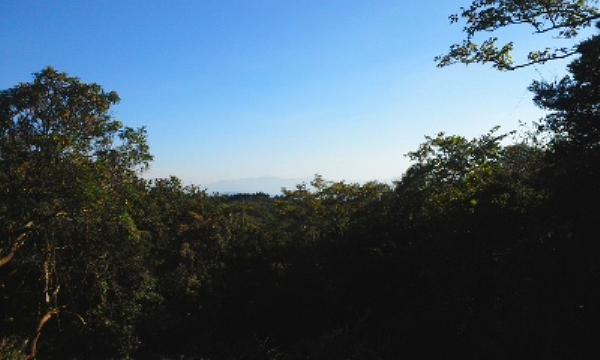 敷地内からの眺望です。開放的な青空の下で別荘ライフがお楽しみ頂けます。